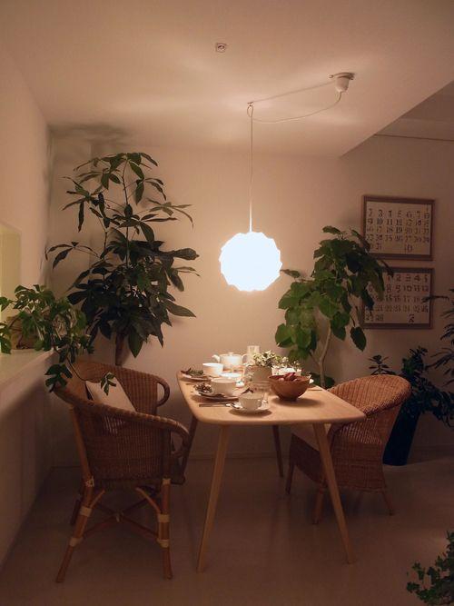 約12畳ほどの細長いリビングダイニング。床、壁、天井は白。木や籐の家具を置いてナチュラルで優しい雰囲気のインテリアに、植物が絶妙にフィットしています。ソファを斜めに置いて奥行き感を出しています。右はアンティークのライティングビューロー。ダイニングチェアを移動すれば書斎コーナーにも。 MLがマンションのモデルルームを手掛けた!/コウちゃん : ML日誌