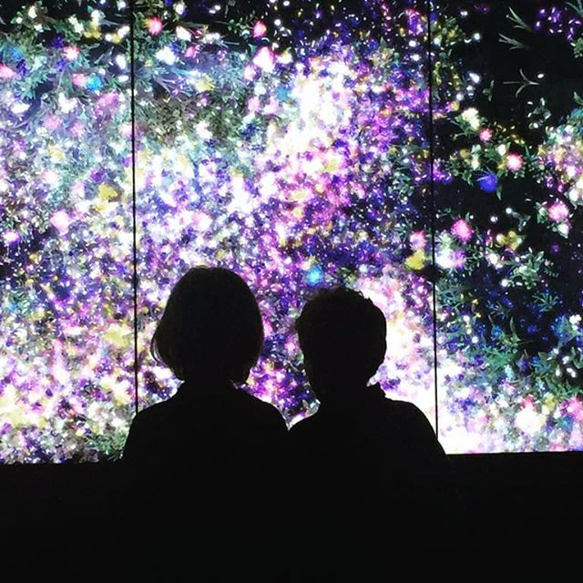 """""""Enjoywas an exhibit that fed the soul  and yet could also be experienced superficially. Each video maze installation and more left all of us yearning for more of it  art surprise color. Having the ability to create a show in which both adults and children alike can feel carefree is a rare and ingenious moment. After all we all deserve a reminder to question rigidity and conformity in our daily lives.Bravo Chiostro del Bramante!""""  #enjoychiostro  Review by @claudiapalmiraa"""