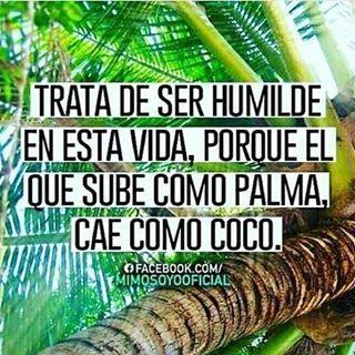 La humildad es la clave.  Siguenos!  #osha #iyawo #oshun #obbi #oshosis #yemaya #maferefun #orishas #elegba #oggun #inle #santeros #eggun #shango #orula #humildad