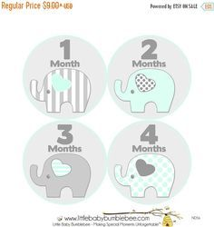 Monthly Baby Stickers, First Year Photo Props, Baby Month Stickers, Baby Announcement, Monthly Photos, Baby Gift, Elephants (N056)