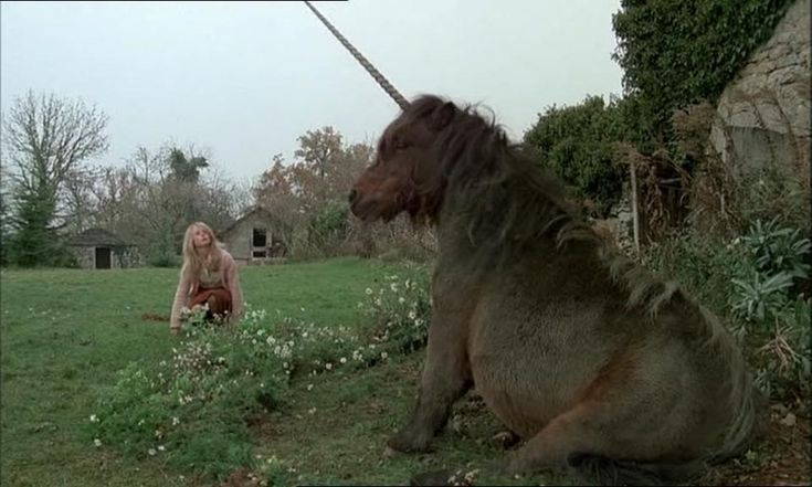 Black Moon (1975) You have to be in a certain mood to watch a film that largely features a talking unicorn.