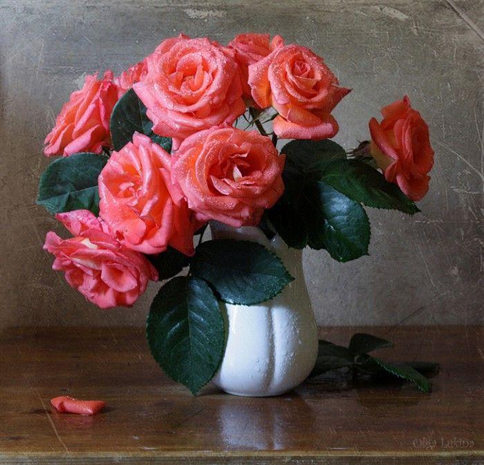 Картинка красивый натюрморт с розами