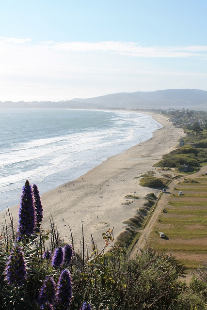 Stinson Beach, CA Walked this beach today with my BFF.S