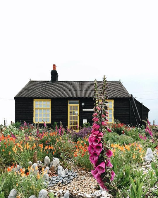 I have fallen in love with this beautiful wooden Scandinavian home. Whisk me away to here and I will be in heaven. Especially amongst these wildflowers.