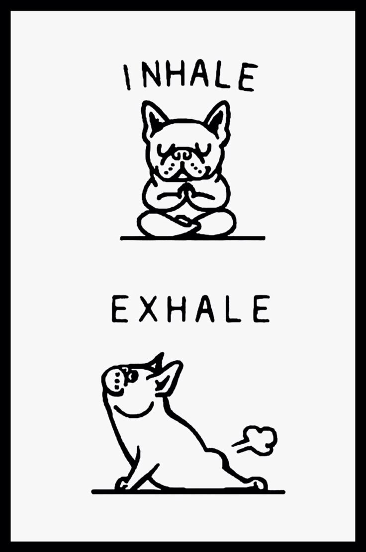 """Inhale....Exhale"", French Bulldog breathing guide during yoga, namaste."