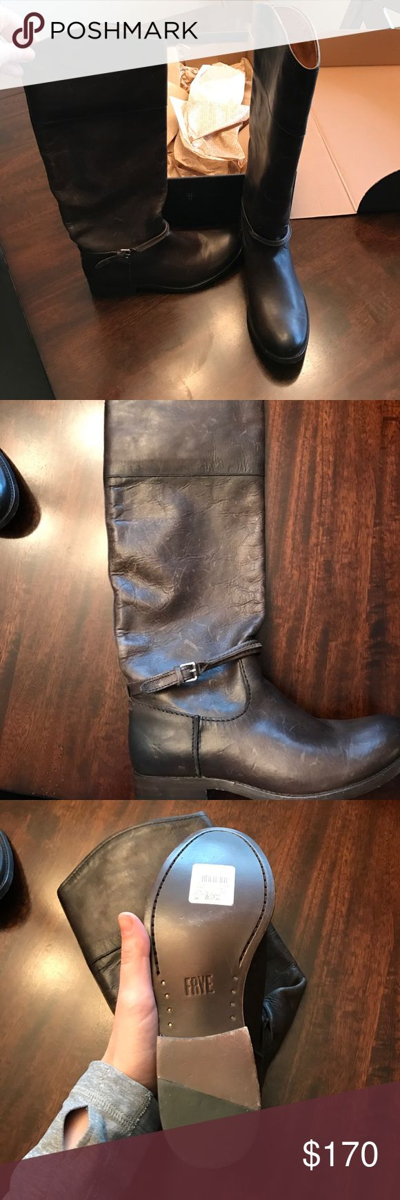 Frye Melissa seam tall New in box Frye Shoes Combat & Moto Boots