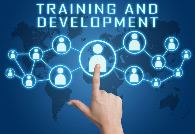 Why Training and Development is Vital to Improve Workplace Efficiency and Welfare!