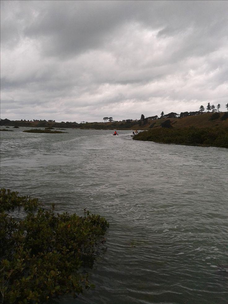Waikopua Creek