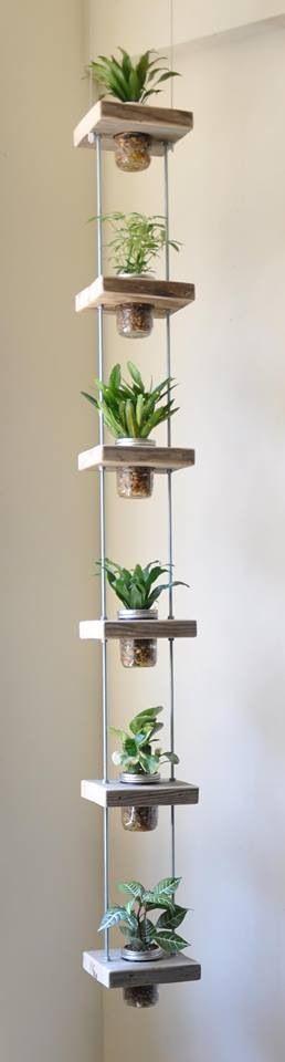 Space saving plants