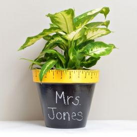 Cute and easy back to school teacher gift, perfect for any classroom!