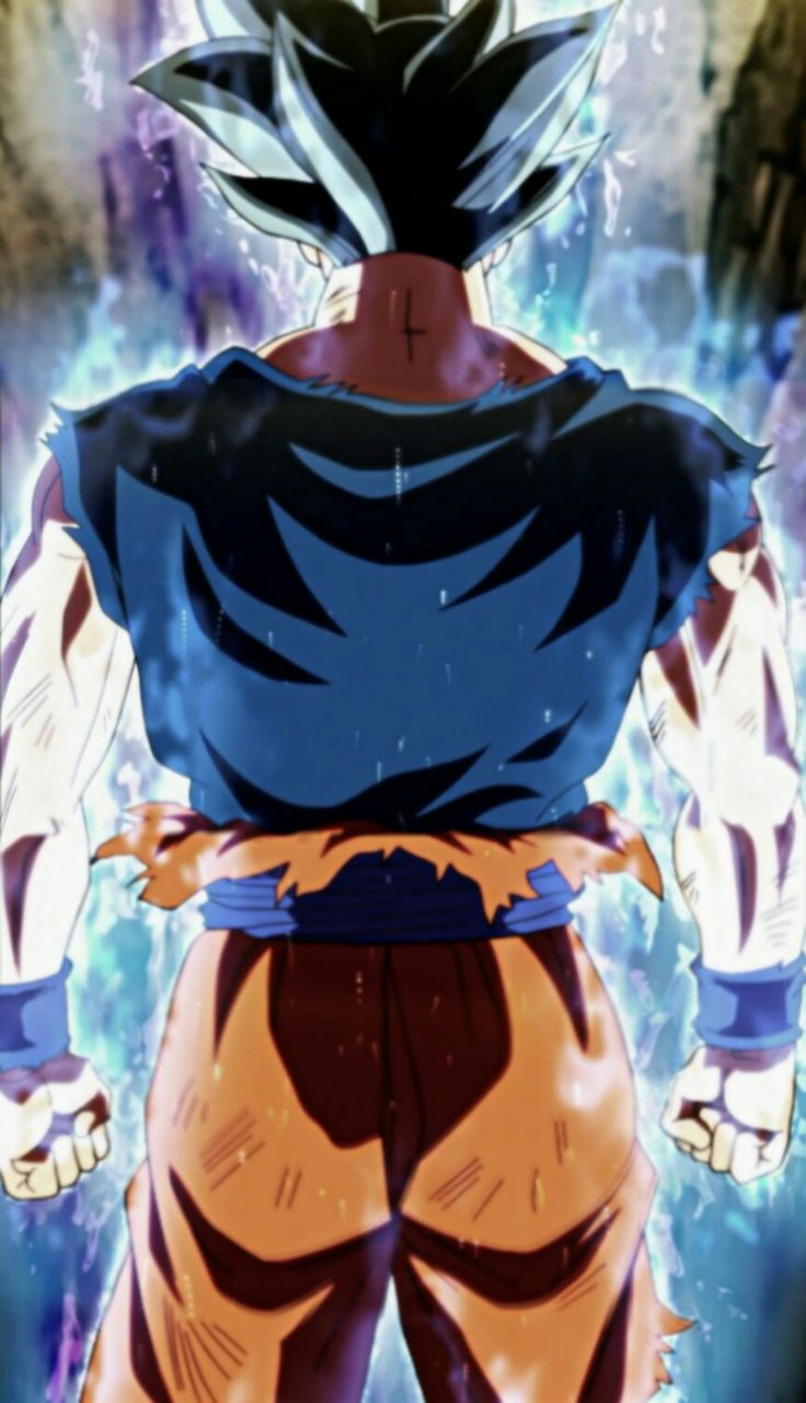 fond d'ecran anime sangoku ultra instinct