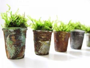 Vintage Thimble Planters and Moss Terrariums by Bella Lane