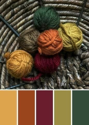 First Hike Of Fall' Color Palette Featuring Our Shetland Yarn