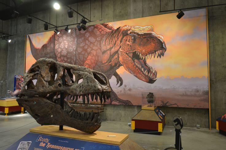 Scotty, le T.rex