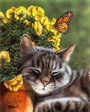 """""""Afternoon Nap""""  by Marilyn Barkhouse"""
