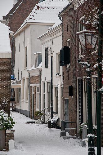 Brielle in sneeuw, 't Wellerondom