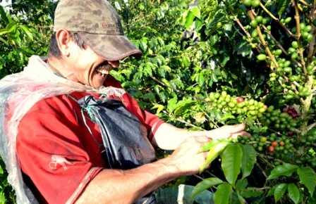 Coffee region, Colombia - a must see!