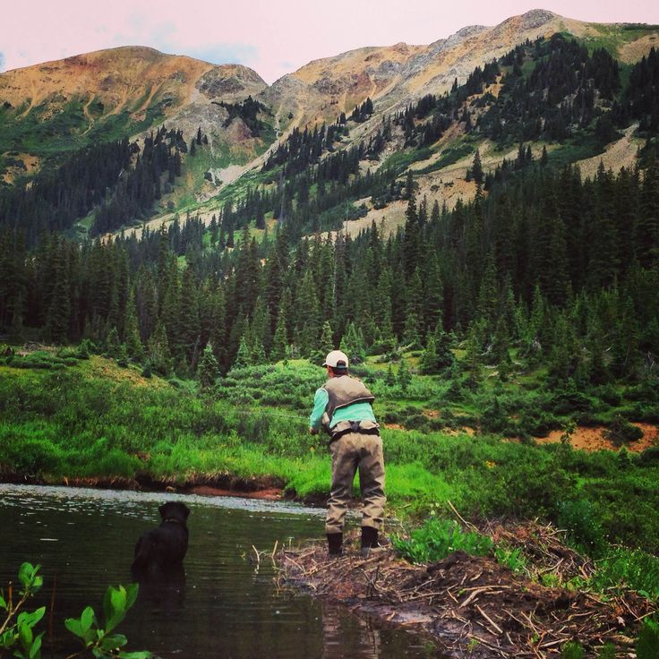Fly fishing up brush creek in crested butte colorado for Crested butte fishing