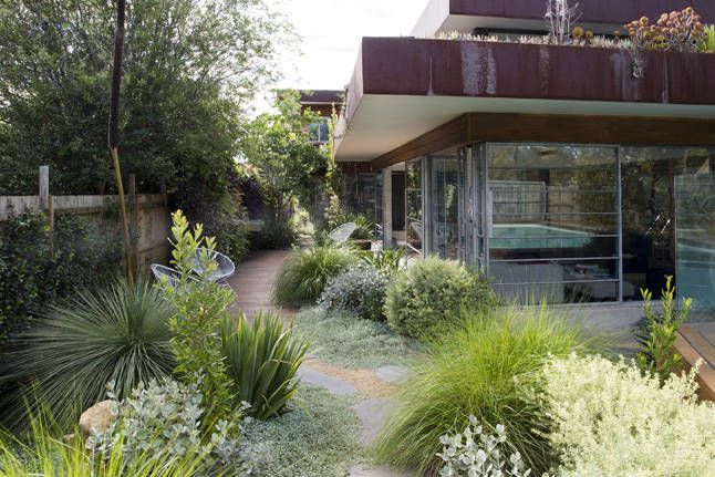 Whilst there was no brief, I wanted the garden to have a seamless connection to the outdoors.  The living area opens across the corners, as well as on the north side.  The polished concrete floors, mud-brick walls, unfinished steel and glass windows, and corten steel and timber finishes called for a similarly unfussy approach to the garden.  I wanted to create something quite natural, using a mix of exotic and native plants.  The garden's structure is deceptive; it looks casual and easy and…