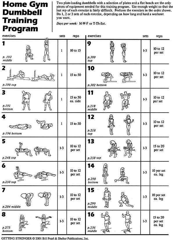 Dumbbell Training | Two dumbbells and a flat bench are the ...