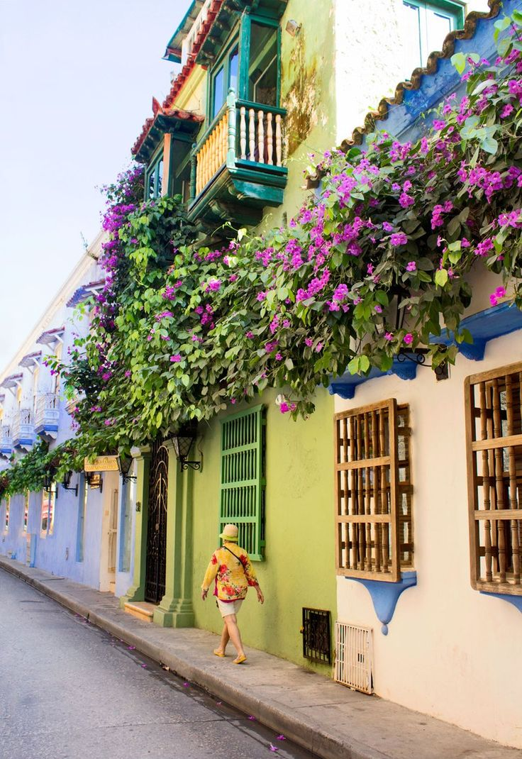 A street lined with bougainvillea-draped homes in Cartagena.