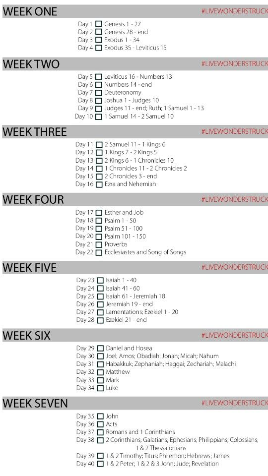40 day Bible Reading Plan. I want to try to do this during a 40 day fast. I've read through the Bible in 30 days, this looks easier.