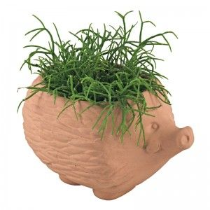 Hedgehog plant pot from IdeaVintage