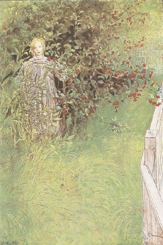 Carl Larsson A Fairy