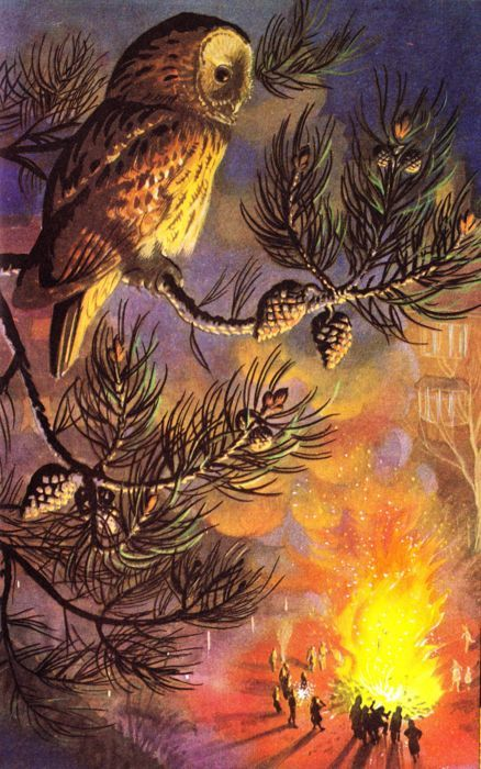 Image from 'What to Look for in Autumm' a Ladybird nature book
