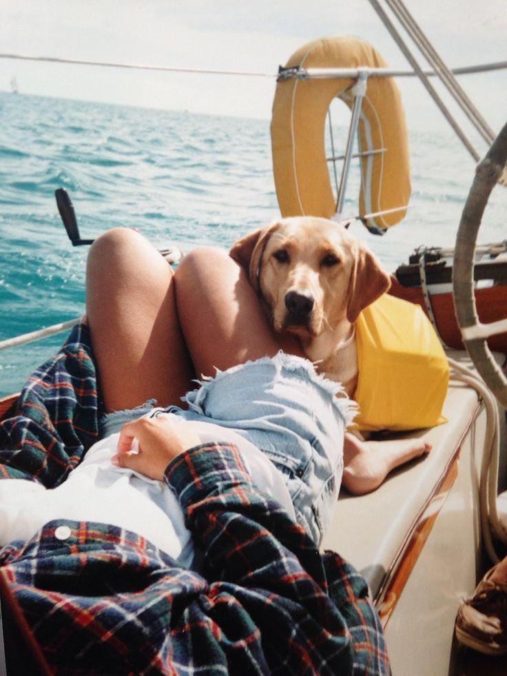 Sailboats and Golden Retrievers