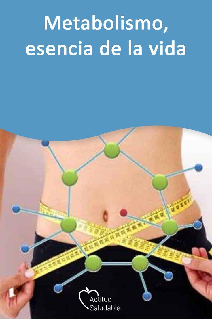 Booster de metabolismo explicado