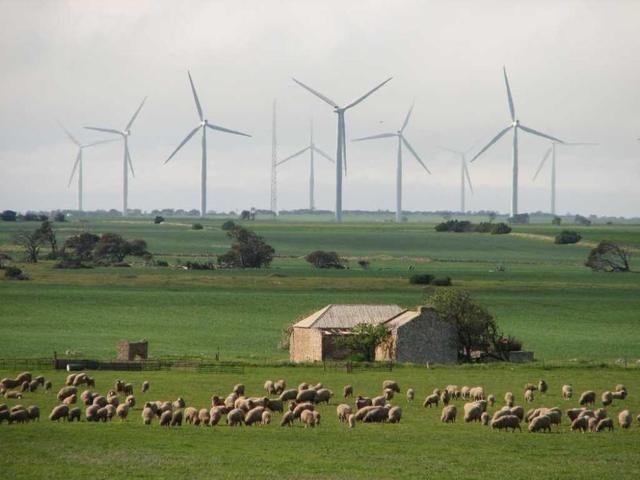 Untitled Future Energy Wind Farm Energy Australia