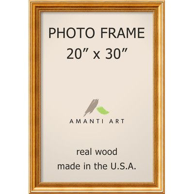 "Astoria Grand Hendry Gold Picture Frame Size: 20"" x 30"""