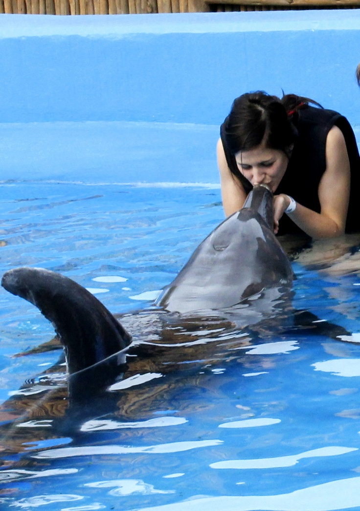 Kiss a dolphin at uShaka Marine World.