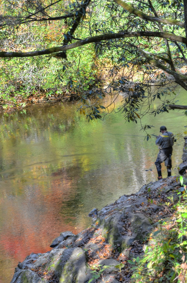 Fly fishing is common in western north carolina this for Smoky mountain trout fishing