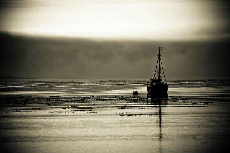 Fishing boat in the morning mist, Falklands