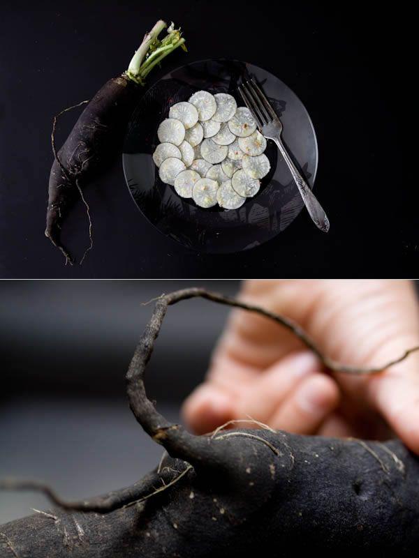 carpaccio-radis-noir
