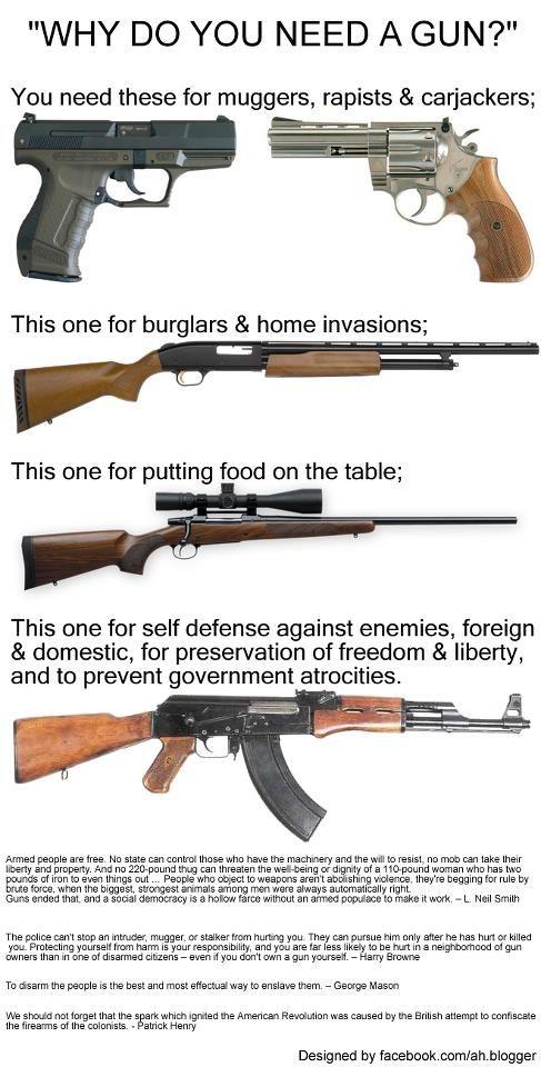 Why Do You Need a Gun?