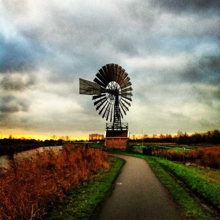 Amerikaanse molen in Kalverpolder Zaandam