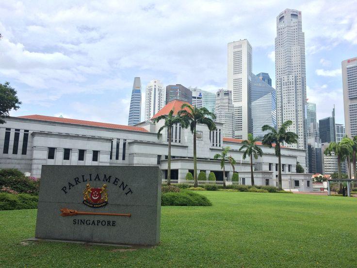 Mark - Singapore (Parliament) NUAA
