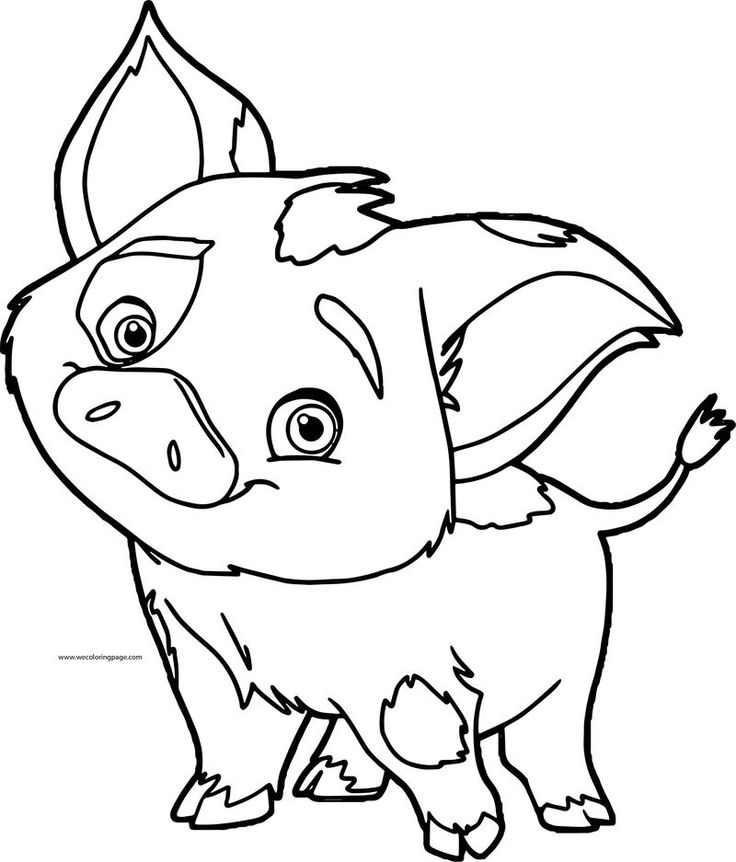 pua pig disney coloring page with images moana