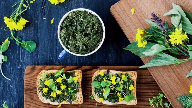 Крапива одно из первых весенних растений. И этим нельзя не воспользоваться. Она содержит множество питательных веществ и обладает чрезвычайно полезными свойствами. Крапива используется при лечении …