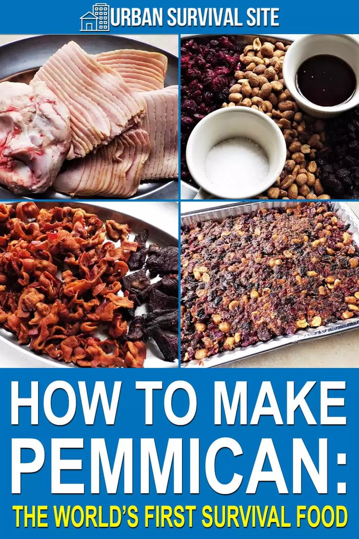 How to Make Pemmican The World's First Survival Food in