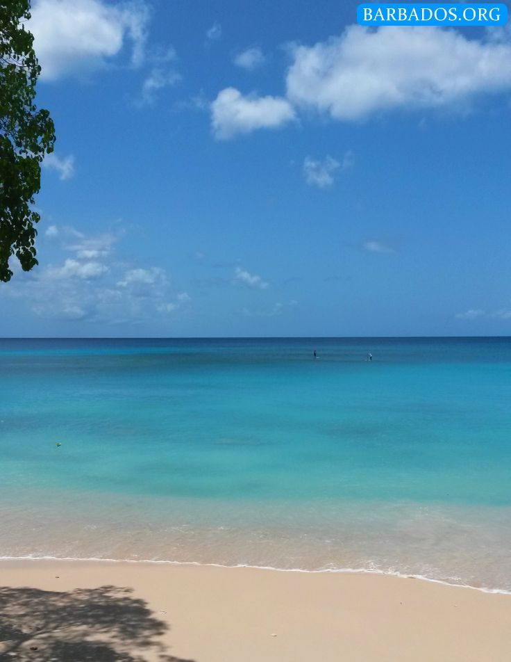 Calm turquoise waters at Batts Rock beach on the west coast of Barbados.