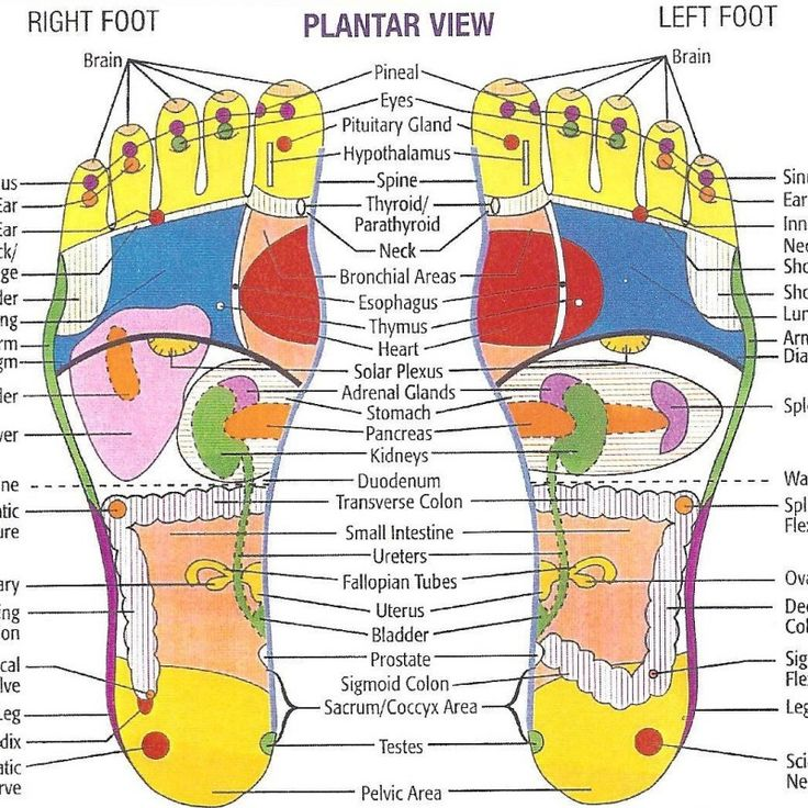 The 25+ best Foot reflexology ideas on Pinterest | Reflexology ...