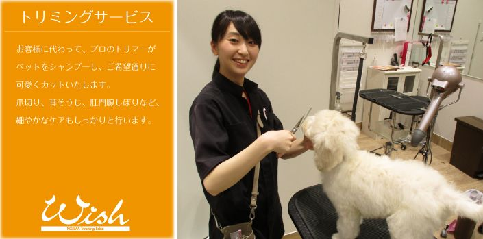 ペットの専門店コジマ ペット ペットショップ 獣医師