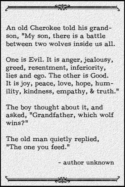 Advice from a Cherokee Indian about evil, anger, jealousy, greed, resentment, lies...