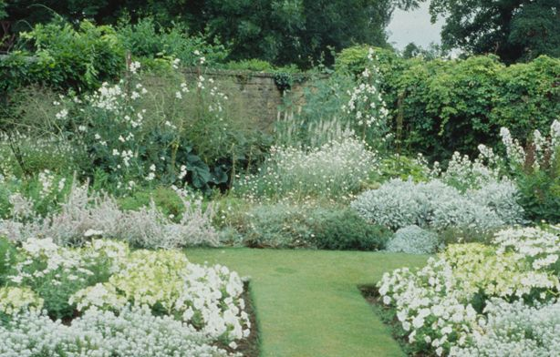 All White Garden