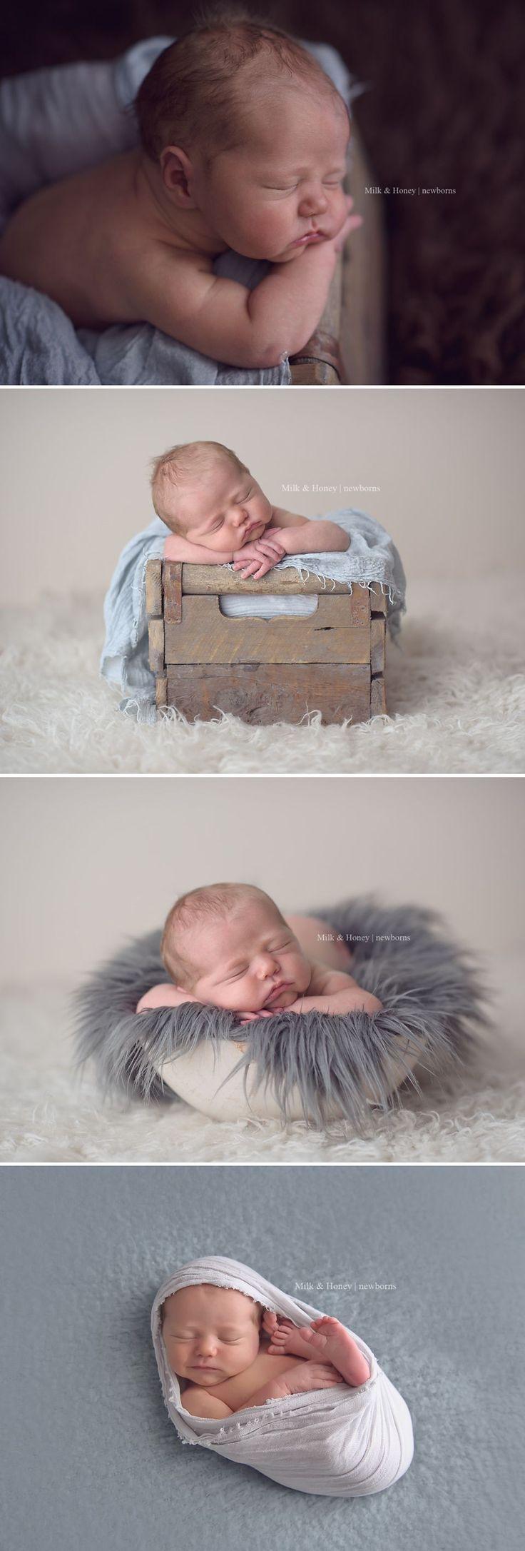 Grey and cream tones for newborn session - milkandhoneyphotography.ca Like & Repin. Noelito Flow. Noel songs. follow my links http://www.instagram.com/noelitoflow