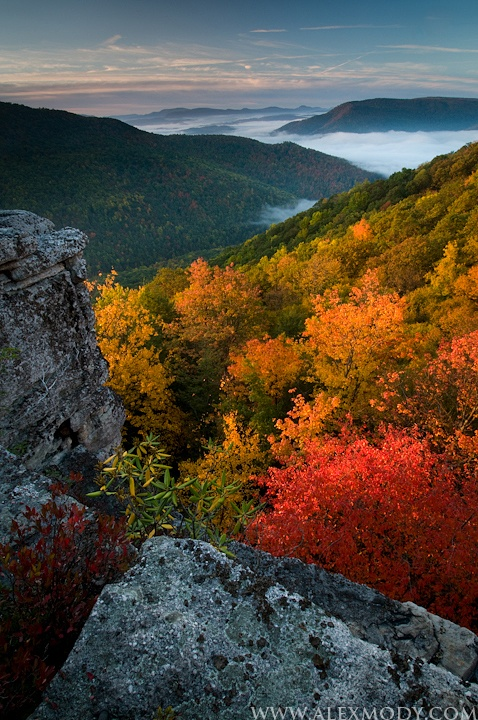 Monongahela National Forest,  Allegheny Mountains of eastern West Virginia, USA.